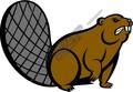 beaver06v4clr-120x